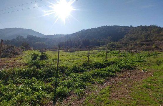 Parcela con hermosa vista al valle